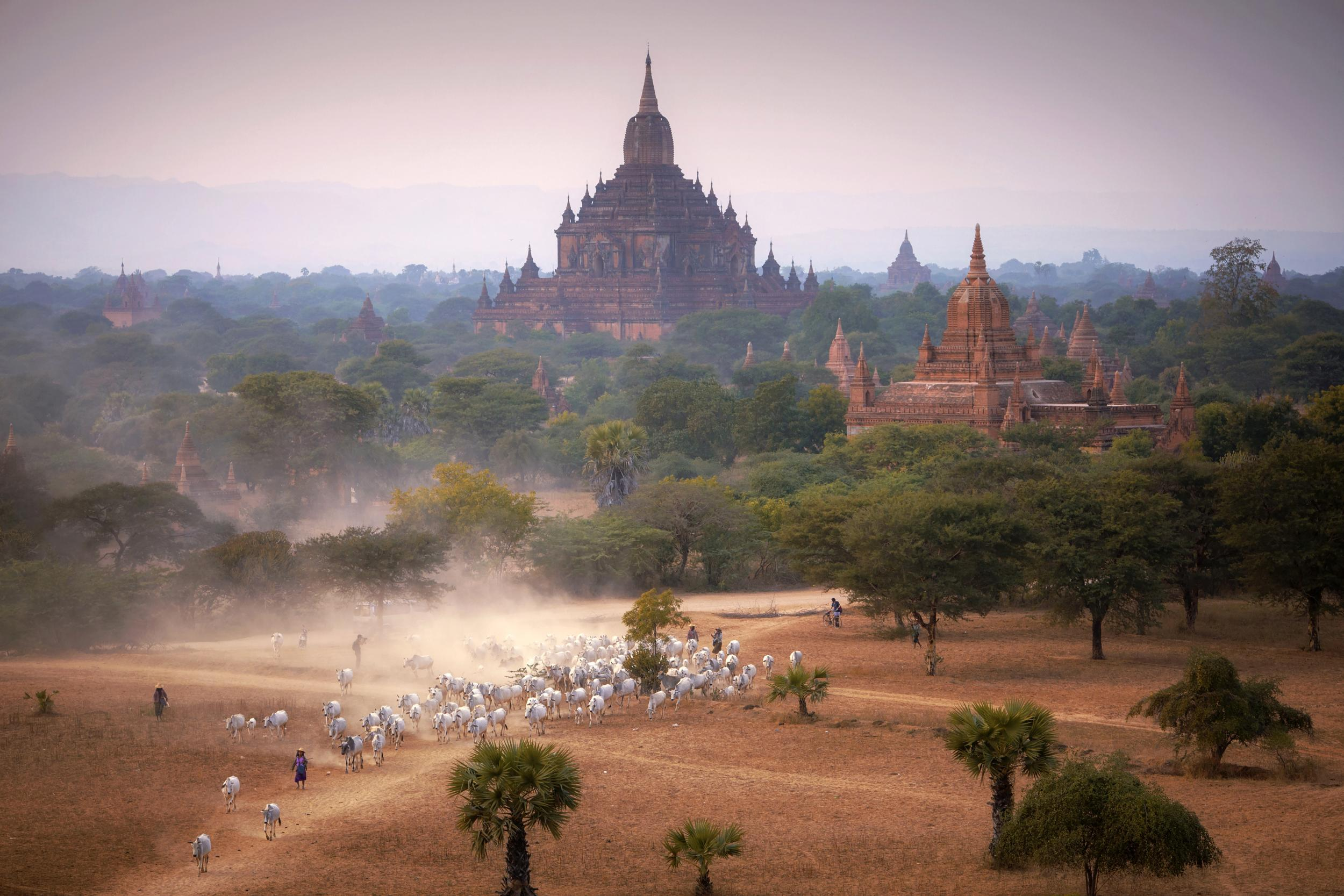 UNESCO Youth Eyes on the Silk Roads Photo Contest Winners. © Pyae Phyo Thet Paing Photography.  The Heritage Monument in Nature of Bagan in Burma, Myanmar